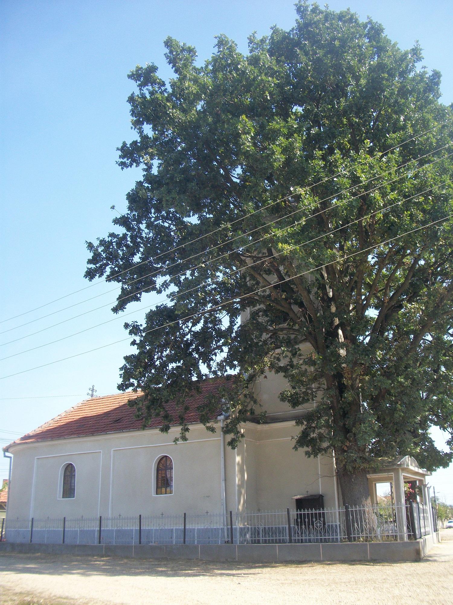 Biserica Greco Catolica (3)