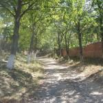 Strada spre Parohia Romano Catolica